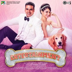 Entertainment Album Cover